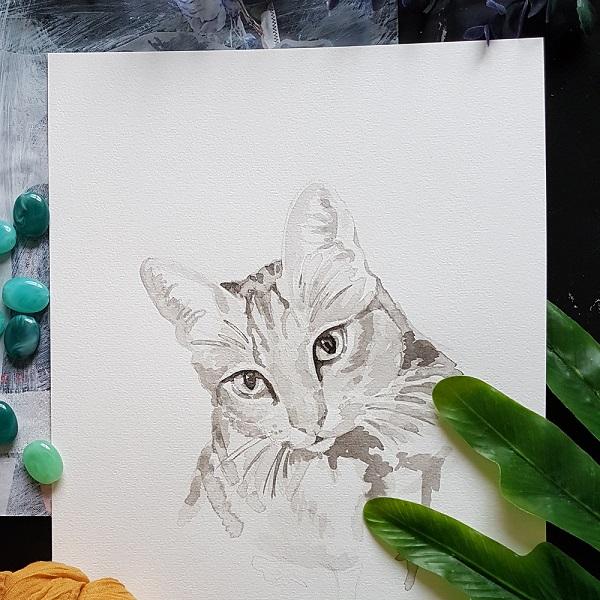 kat inkt portret in opdracht MadameRuiz poes poezenportret kattenportret huisdierportret kunst bespoke portrait