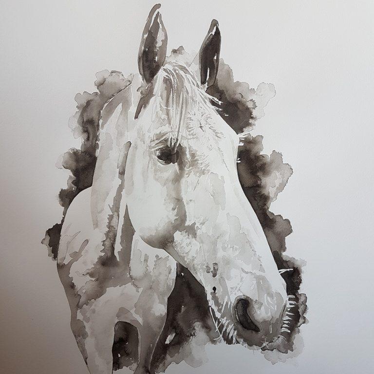 paard inkt portret paardenportret MadameRuiz VTWonen Weer verliefd op je huis kunstenares Geffen
